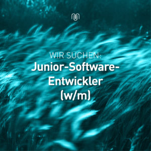 junior_softwareentwickler